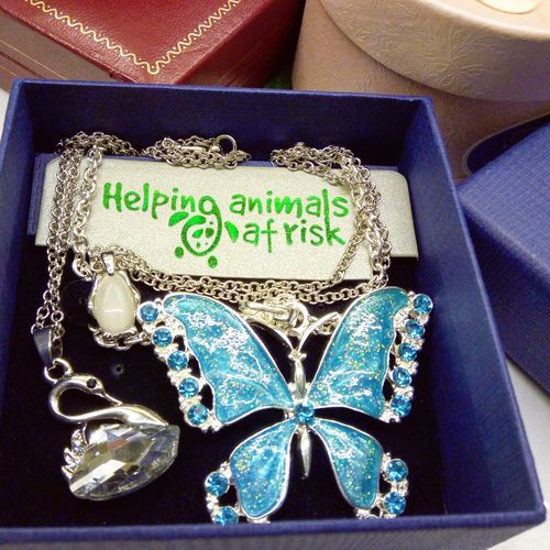 Free Crystal Erfly Necklace