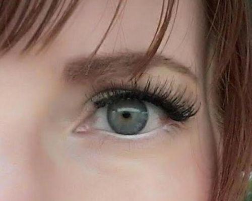 fd525b70590 Elegant Magnetic False Eyelashes – Toolicorn
