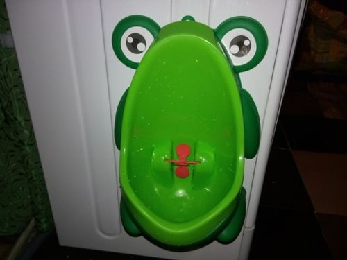 Walker Shaul review of Frog Toilet