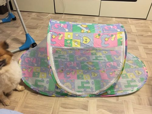 Leona Carson review of Baby Tent
