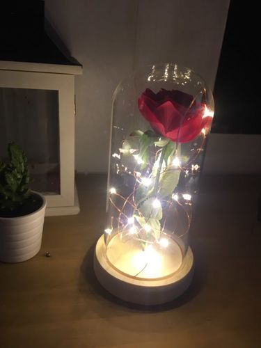 Lovely Beauty And Beast Enchanted Rose Lamp   Reviews