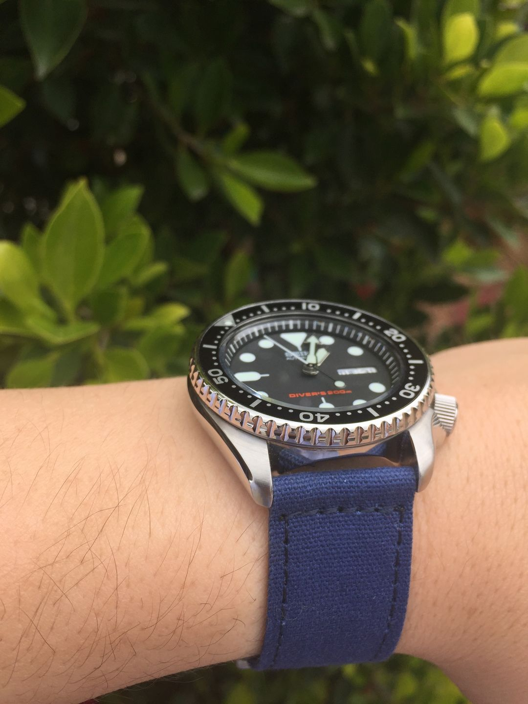 Black face worn with a blue canvasoft band