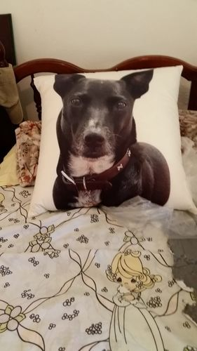 Custom Dog Shaped Pillow