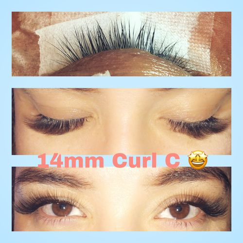 Buzz Lashes | The Best Premade Volume fans Eyelash Extensions