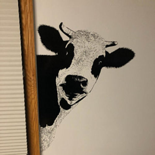 Peeking Cow Wall Decal Sticker for your Kitchen  #5476