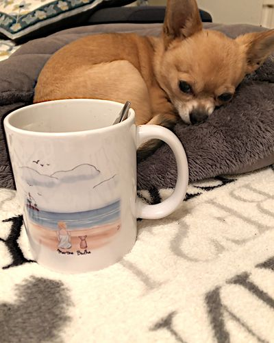 Martine G. review of Customize Hand Drawn Dog & Owner Mug Holiday of Gift -Beach Scenery