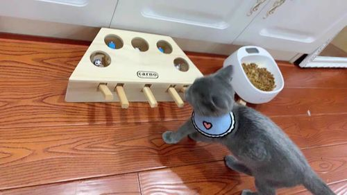 Cherlie X. review of Wooden Cat Hit Gophers Toys
