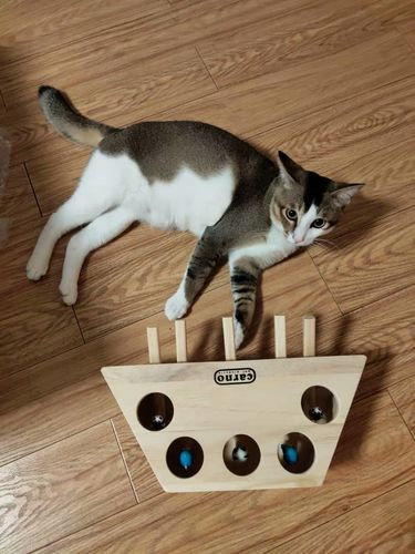 Jerry T. review of Wooden Cat Hit Gophers Toys