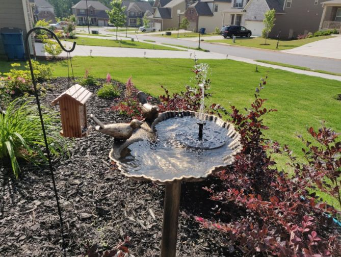 MARK RYSKOSKI review of 50% OFF Today!-Spring Solar Powered Bionic Fountain(Buy 2 Free Shipping)