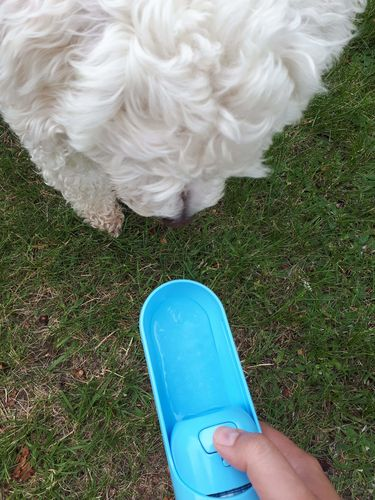 Christal Gersten review of Doggie Bottle 2.0