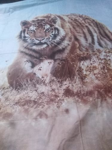 Fearless Lion - Bed Sheet